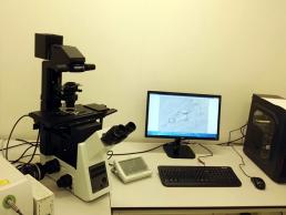 5. Microscop cu sistem fluorescent